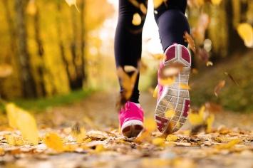 Wpływ aktywności fizycznej na odporność